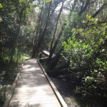 crosslands boardwalk