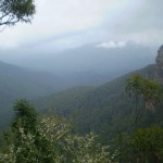 Lyrebird Lookout