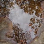 Reflection in rock pool