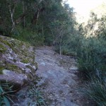 Track below Martins Lookout