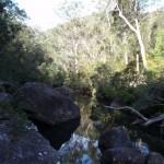 Glenbrook Creek