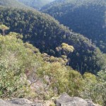 View from Martin's Lookout