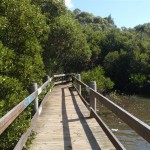 salt pan creek boardwalk