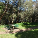 Salt Pan Creek picnic area