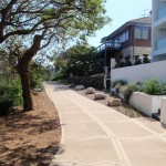Manly Scenic Walkway behind houses