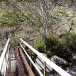 thredbo river bridge