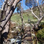 Bridge across Bogong Creek
