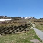 Mt Kosciuszko path