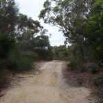 Elvina Track, near West Head Rd