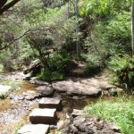 Stepping stones across the Kedumba River at the base of Katoomba Cascades