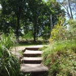 Steps from Katoomba Falls Park