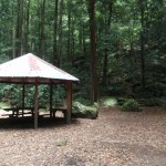 Leura Forest Gazebo