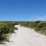 Clear sky, walking along the trail